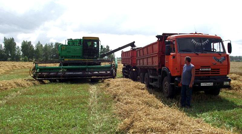 Уборка урожая в «Желнинском»