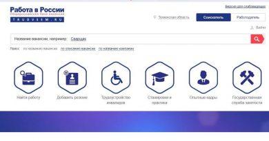 Специальный раздел по стажировкам и практикам будет создан на портале Роструда «Работа в России»