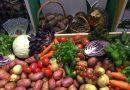Николай Цуканов: главная задача — обеспечение продовольственной безопасности.