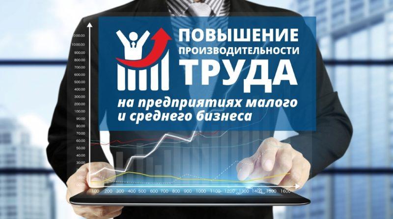«Адресная поддержка повышения производительности труда на предприятиях»